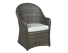 Florentine Dining Arm Chair NC4317-DC